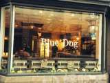 Blue Dog Kitchen Bar (50街)
